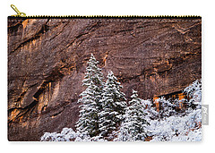 Carry-all Pouch featuring the photograph Snow Globe by Dustin LeFevre