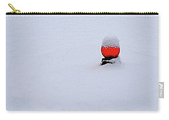 Carry-all Pouch featuring the photograph Snow Globe by Nick Kloepping