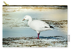 Snow Goose - Frozen Field Carry-all Pouch by Robert Frederick