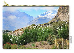 Carry-all Pouch featuring the photograph Snow In The Desert by David Chandler