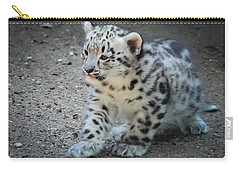 Snow Leopard Cub Carry-all Pouch by Terry DeLuco