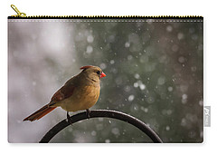 Carry-all Pouch featuring the photograph Snow Showers Female Northern Cardinal by Terry DeLuco
