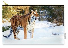 Snow Tiger Carry-all Pouch by Steve McKinzie