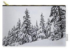 Snowy-1 Carry-all Pouch