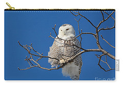 Snowy Owl 7 Carry-all Pouch