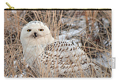 Snowy Owl Carry-all Pouch by Nancy Landry