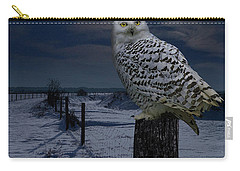 Snowy Owl On A Winter Night Carry-all Pouch