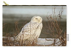 Snowy Owl On Cape Cod Carry-all Pouch