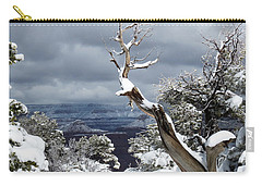 Snowy View Carry-all Pouch