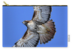 Soaring Red-tail Carry-all Pouch