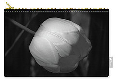 Softly Carry-all Pouch by Jim Gillen