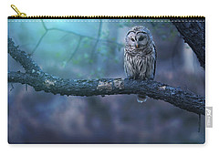 Solitude - Square Carry-all Pouch by Rob Blair