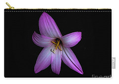 Carry-all Pouch featuring the photograph Solo In Pink by Judy Hall-Folde
