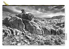 Sonora Desert Carry-all Pouch by Sean Griffin
