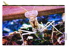 Sonoran Desert Ground Mantis Carry-all Pouch