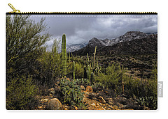 Sonoran Winter No.1 Carry-all Pouch