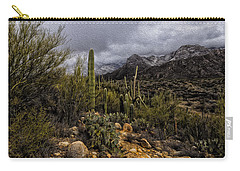 Sonoran Winter No.3 Carry-all Pouch