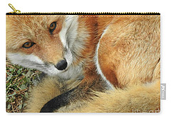 Soulful Eyes Carry-all Pouch