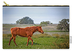 Carry-all Pouch featuring the photograph Southern Field by Melinda Ledsome
