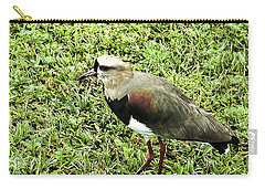 Southern Lapwing Carry-all Pouch by Norman Johnson