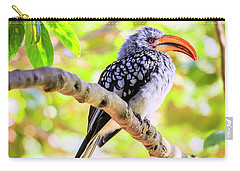 Carry-all Pouch featuring the photograph Southern Yellow Billed Hornbill by Alexey Stiop