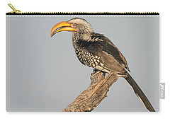 Southern Yellow-billed Hornbill Tockus Carry-all Pouch by Panoramic Images