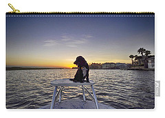 Spaniel At Sunset Carry-all Pouch