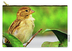 Sparrow In Green Carry-all Pouch