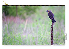 Sparrow On The Peak Field Carry-all Pouch
