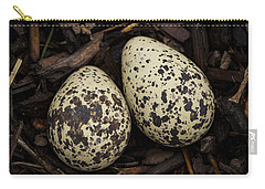 Speckled Killdeer Eggs By Jean Noren Carry-all Pouch by Jean Noren