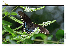 Spicebush Swallowtail Butterfly Carry-all Pouch by Carol Bradley