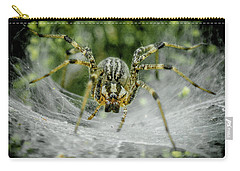 Spider Carry-all Pouch by Henri Irizarri