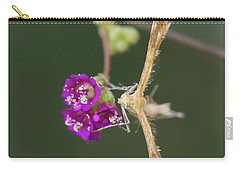 Spiderling Plume Moth On Wineflower Carry-all Pouch