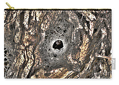 Carry-all Pouch featuring the photograph Spider's House by Cassandra Buckley