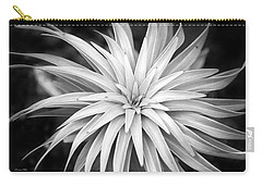 Carry-all Pouch featuring the photograph Spiral Black And White by Christina Rollo