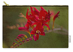 Splash Of Red. Carry-all Pouch by Clare Bambers