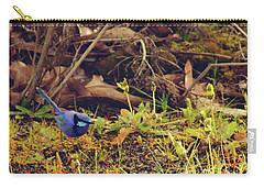 Splendid Fairy Wren Carry-all Pouch by Cassandra Buckley