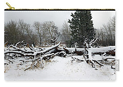 Carry-all Pouch featuring the photograph Split Personality - Panorama by Shane Bechler