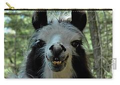 Carry-all Pouch featuring the photograph Spooky Llama by LeeAnn McLaneGoetz McLaneGoetzStudioLLCcom