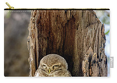 Spotted Owlet Carry-all Pouch