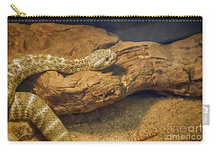 Spotted Rattlesnake   Blue Phase Carry-all Pouch by Anne Rodkin