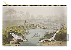 Spotted Sandpiper Carry-all Pouch