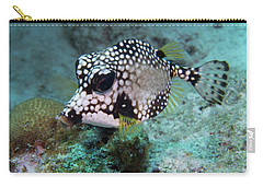Carry-all Pouch featuring the photograph Spotted Trunkfsh by Jean Noren