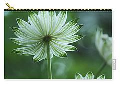 Botanica .. Spray Of Light Carry-all Pouch