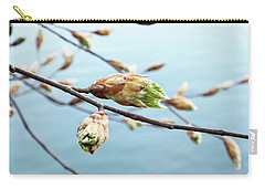 Spring At The Lake Carry-all Pouch by Karen Stahlros