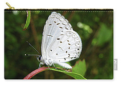 Spring Azure Butterfly Carry-all Pouch by Donna Brown