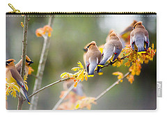 Carry-all Pouch featuring the photograph Spring Beauties  by Parker Cunningham