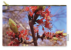 Spring Bloom #1 Carry-all Pouch by Jason Williamson