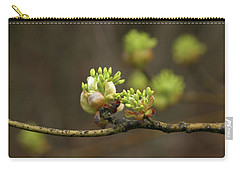 Spring Buds 9365 H_2 Carry-all Pouch