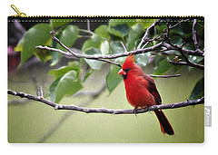 Spring Cardinal Carry-all Pouch by Lana Trussell
